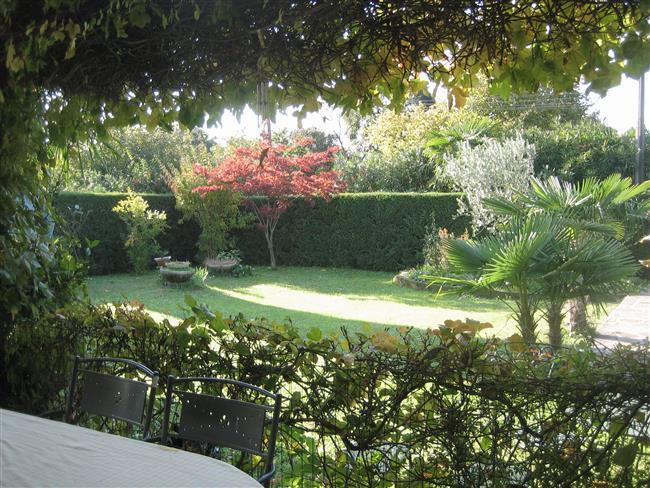 umzäunter Garten