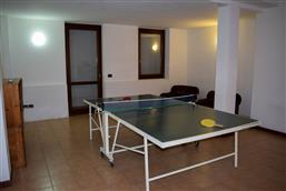 Tischtennisplatte